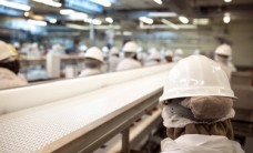 Food Manufacturers Lack Supply Chain Visibility, Risk Reputational Damage
